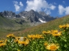 Kackar Gebirge - 2007