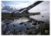 Hardangervidda 2009