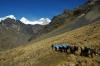 Trekking Alpamayo und Huascaran